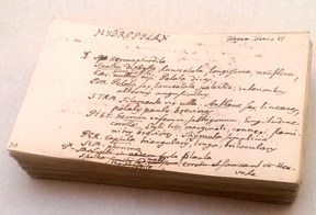 a-stack-of-linnaeus-index-cards